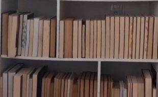 Como alguém organiza livros assim?