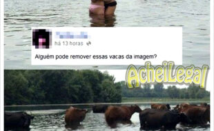 Ajudando as amigas na internet