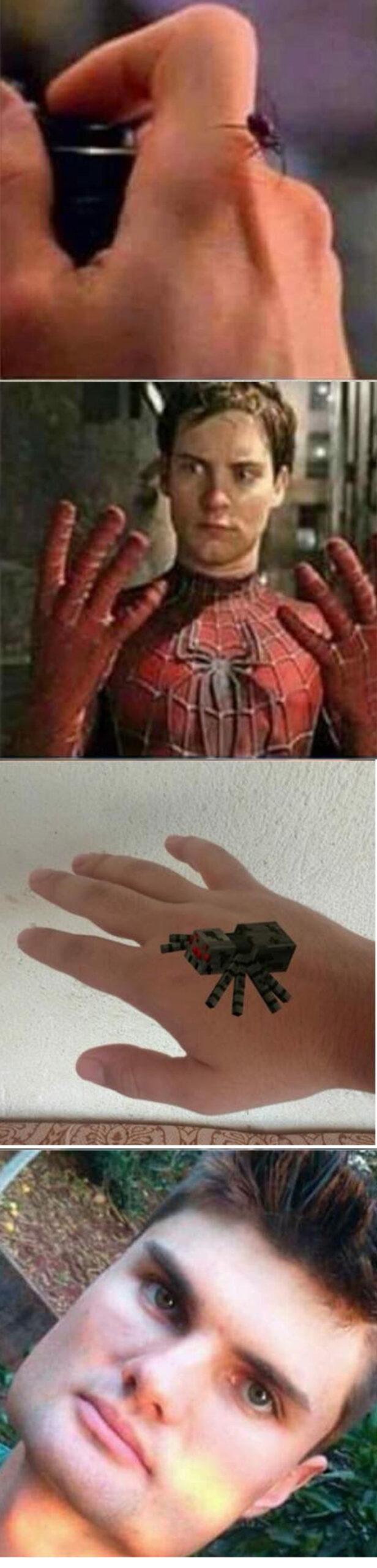 O que acontece se você for picado por uma aranha